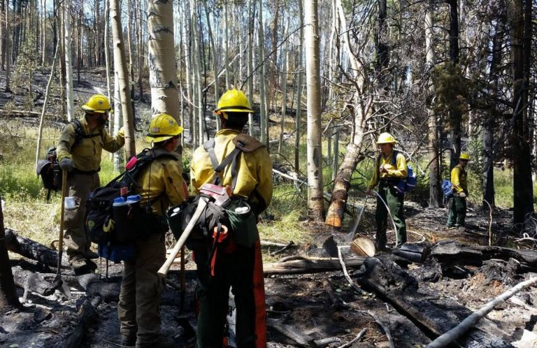 A photo of the Delaware wildfire crew on Wyoming's Tokewanna Fire taken on August 2. Pictured are (from left to right): Todd Shaffer, Sam Topper, Daryl Trotman, Spencer Valenti, and Bart Wilson. Firefighters made good progress as they continued to mop-up and remove hazard trees in and around structures in the Tokewanna Estates subdivision.
