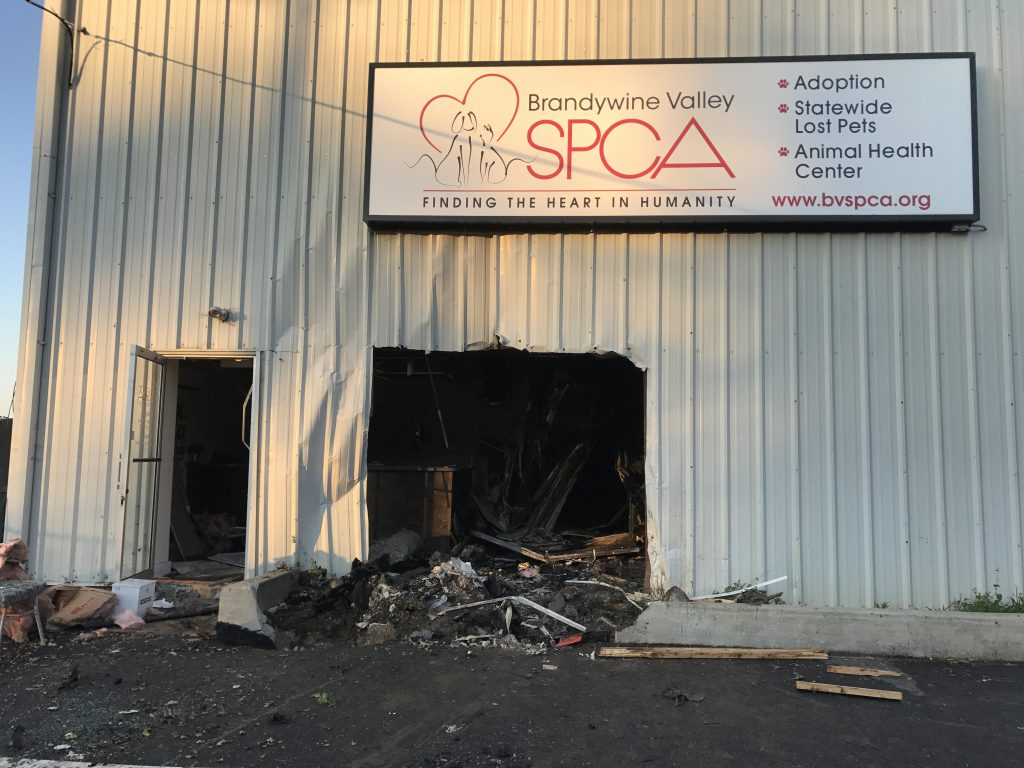 Woman, animals killed after crash into SPCA building in Delaware