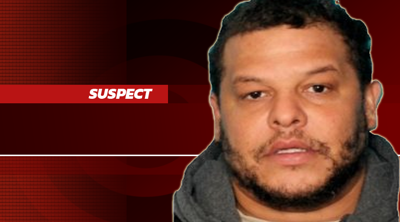 Troopers: Greenville-Area Purse Snatching Suspect Apprehend While